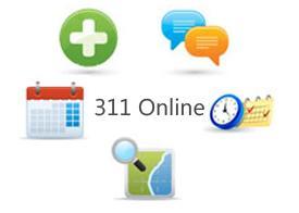 Visit 311 Online